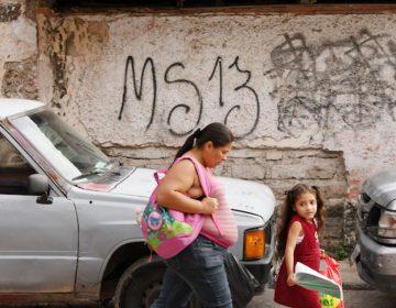 MS-13 extorsiona a inmigrantes cerca de Washington DC