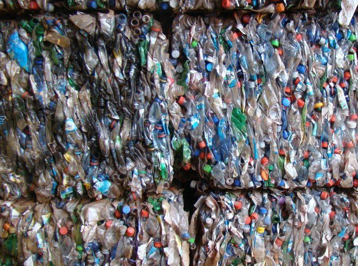Tus botellas de plástico y cepillos de dientes están envenenando corales