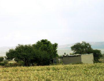 Falta de regularización en vivienda retrasa apoyos: CIOAC