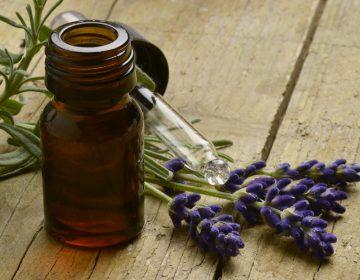 Aceites esenciales: cómo nuestros ancestros utilizaban plantas para curarse