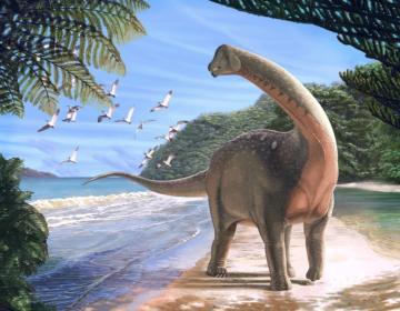 Un dinosaurio encontrado en Egipto ofrece nuevas pistas de un antiguo misterio