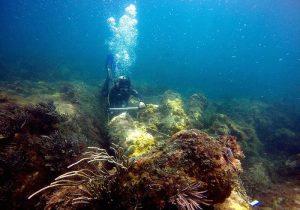 Encuentran antiguo buque de guerra y barco de vapor en México