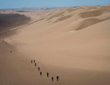 Gran parte de la Tierra podría volverse desierto en el 2050