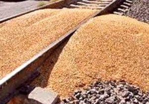 Pierden avicultores de Tehuacán 20 mdp al año por robos a trenes