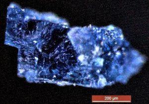 ¿La vida llegó a la Tierra en un meteorito? Esto dice la ciencia