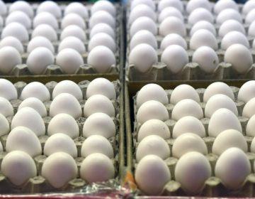Olímpicos de Invierno 2018: ¿Por qué el equipo noruego ordenó 15,000 huevos?