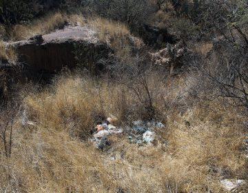 Analiza INAH presencia de restos paleontológicos en Cobos