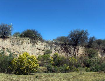 Ofrecería municipio terreno a cambio de Cobos