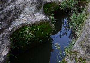 Vertirían aguas tratadas al arroyo de Cobos