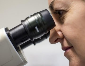 Un nuevo estudio revela que dos bacterias son responsables del cáncer de colon