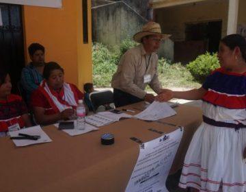 Prevén cuadros a modo para la circunscripción electoral étnica
