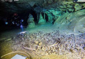 Tesoros mayas y restos de animales extintos, los hallazgos dentro del Gran Acuífero