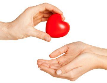 La danza de la vida: el arte de dignificar al donador de órganos
