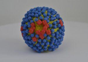 La primera gripe que tuviste determina en secreto cómo respondes a las infecciones