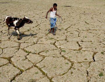 Sequías e inundaciones son más frecuentes debido al cambio climático, insisten científicos