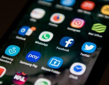 Pig.gi, una app lanzada en México que podría hacer mal uso de tus datos