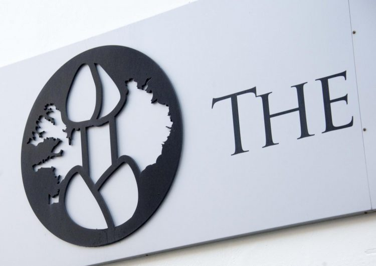 """""""Este no es el museo del pene"""", el letrero que colocó una oficina de Islandia para 'guiar' a los turistas"""