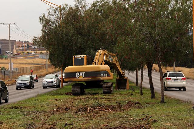 Pendiente reforestación por pasos a desnivel