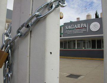Gestiona SAGARPA 1.5 mdp para apoyos a antorchistas