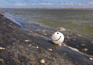 Un mapa muestra playas populares de EE.UU. contaminadas con bacterias fecales