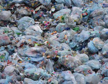 Querétaro pospone regulación de bolsas plásticas desechables