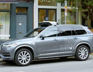 Uber tendrá competencia en SLP para que entienda que debe normarse: diputado