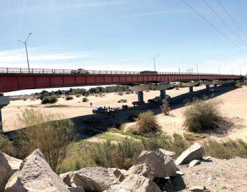 Reconstruyen ecosistemas perdidos del Río Colorado