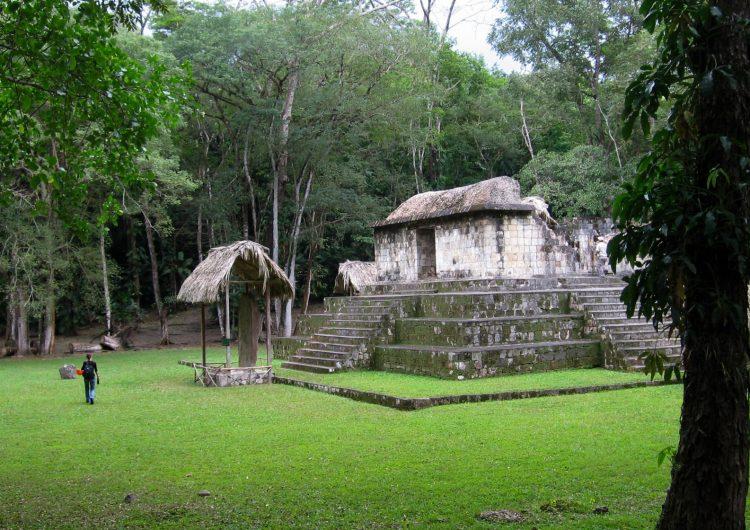 Científicos encuentran primera evidencia de intercambio de perros vivos para ceremonias mayas