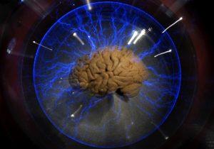 ¿Qué es la consciencia? Un estudio nuevo arroja luz sobre lo que sucede en el cerebro durante la anestesia