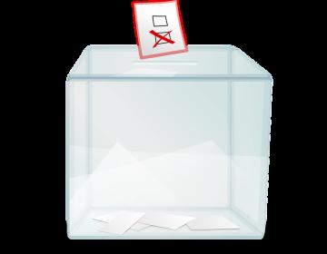 Queremos que todos los guanajuatenses en el extranjero puedan votar: IEEG