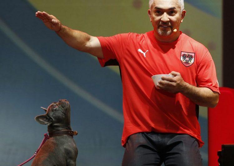 Defendiendo al líder de la manada: perros de César Millán evitan un robo en su casa