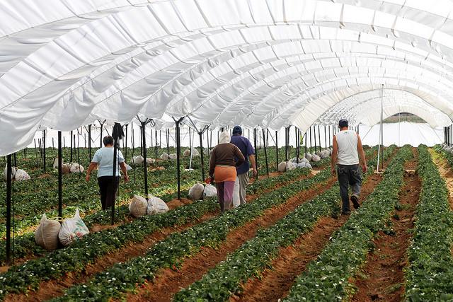 Puebla, décima economía con mayor crecimiento del país: Inegi