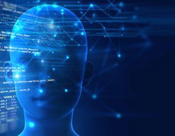 El cerebro humano puede confundir lo real con lo imaginado, según estudio