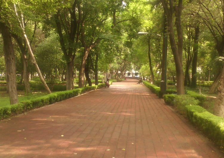 Dos años de conflicto entre comerciantes de Alameda Hidalgo y municipio