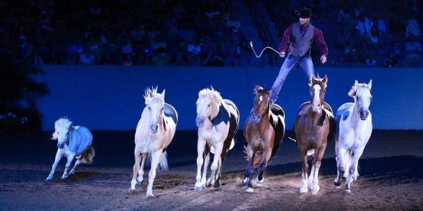 Competirán caballos y jinetes en Del Mar