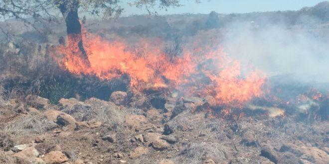 Suman 66 incendios en los primeros 3 meses de 2018