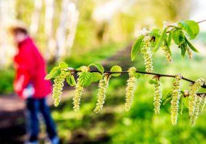 ¿Por qué tenemos alergias? Así responden nuestros cuerpos en primavera