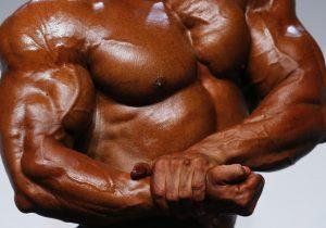 Este músculo artificial puede levantar 12,600 veces su propio peso