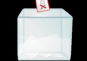 La elección será ciudadana y transparente: IEEG