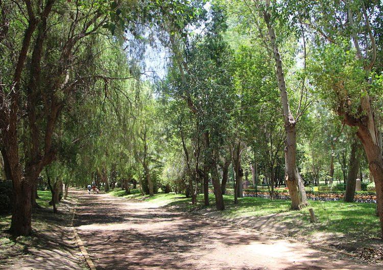 Reforzarán seguridad en parque Tangamanga