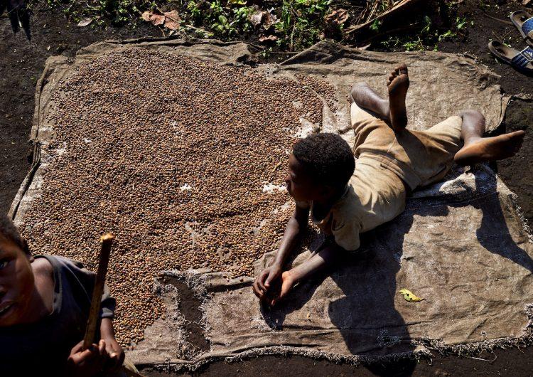 Escándalo sacude a ONG internacionales: pedían sexo a niños refugiados a cambio de comida