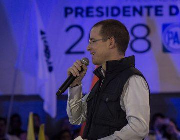 #EstoSíPasó: la campaña de Anaya contrató a la encuestadora Massive Caller