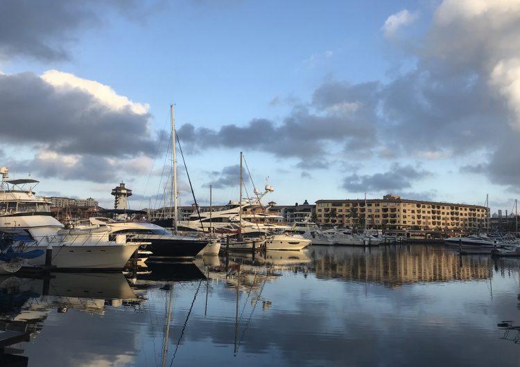 Detectan inequidad entre prestadoras de servicios portuarios en Puerto Vallarta