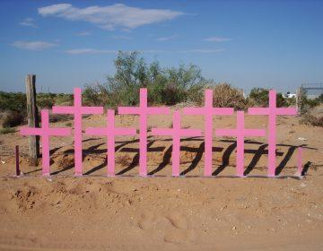 Otro caso de feminicidio en Guanajuato. Inculpado recibe 67 año de prisión