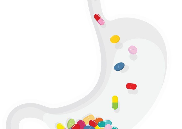 Bichos estomacales: ¿los probióticos en verdad ayudan a tu intestino?