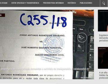 Expresa Artículo 19 preocupación por ataques a la libertad de expresión en Guanajuato