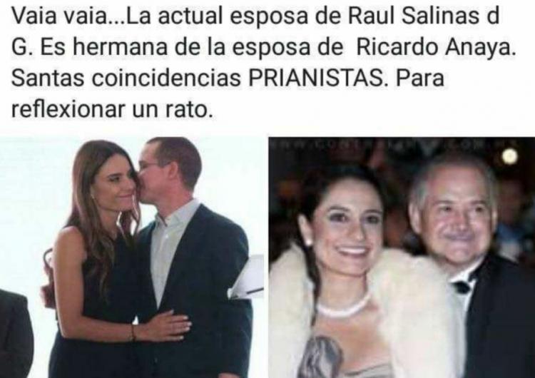 Los falsos lazos familiares entre Ricardo Anaya y los Salinas