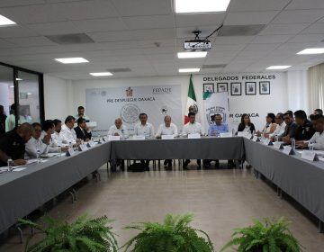 Van 183 denuncias por delitos electorales: Fepade