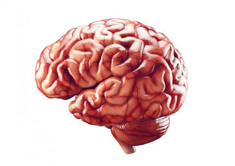 La depresión acelera el envejecimiento cerebral, según nuevo estudio