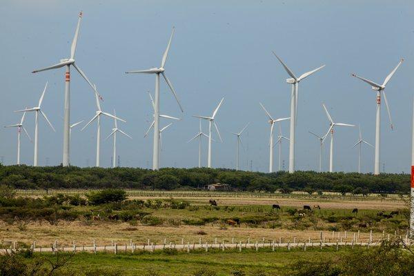 Disminuye generación de energía eólica a mayor intensidad de viento